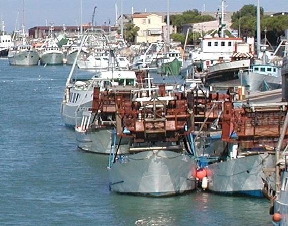Pescherecci nel Porto canale