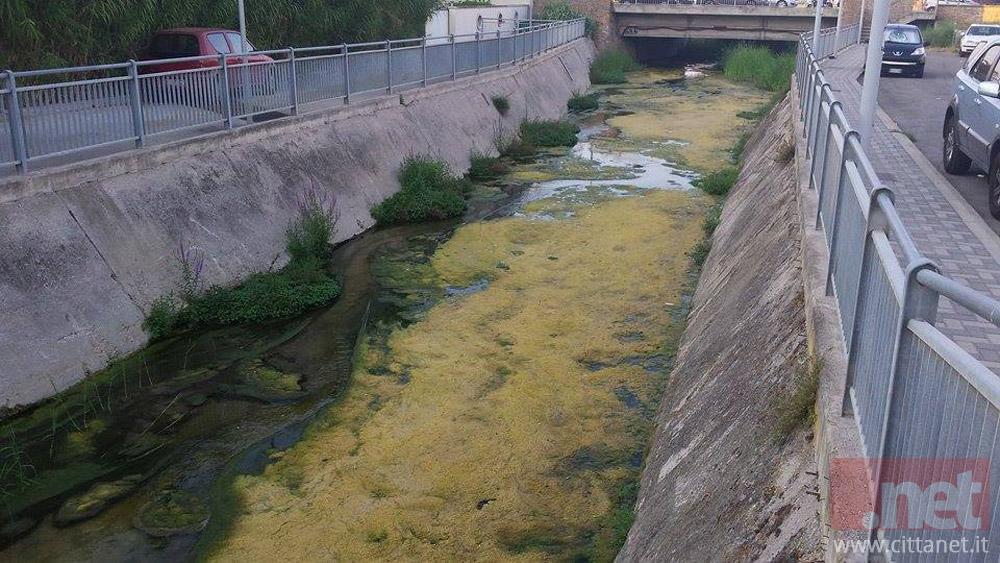 La strana sostanza gialla nel Fosso Vallelunga. Foto di Stefania Pagannone