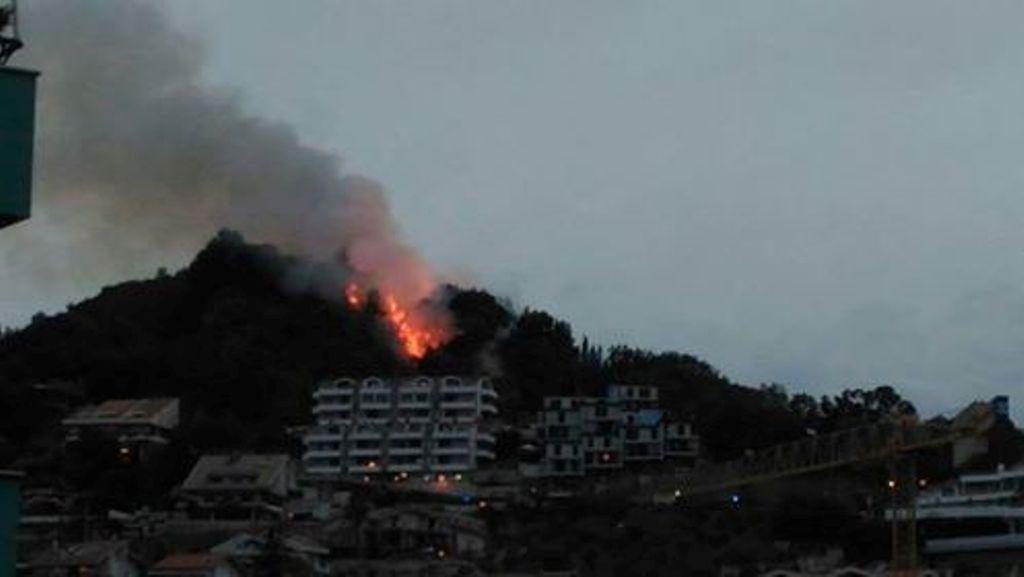 Montesilvano, fuoco sul Colle della Giovane minaccia le abitazioni