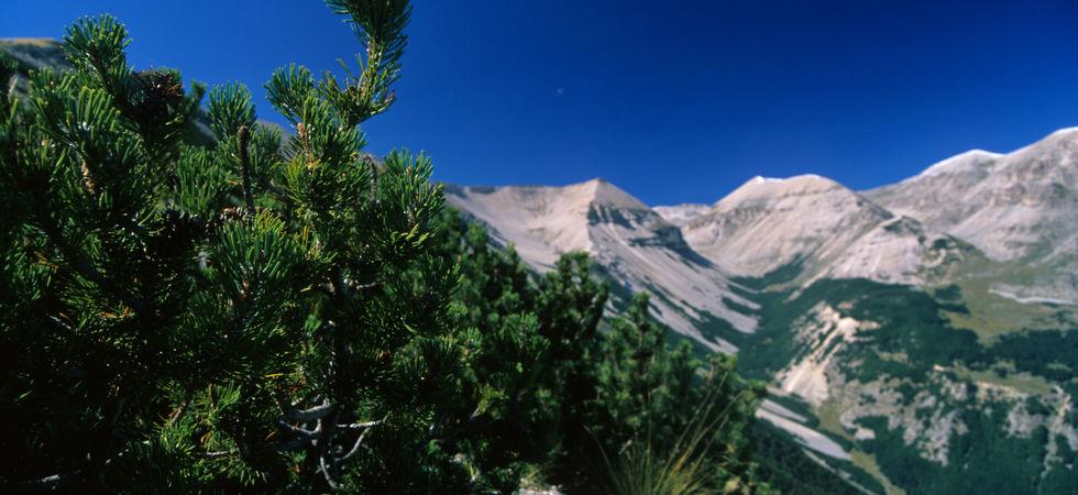 Foto dal sito www.parcomajella.it